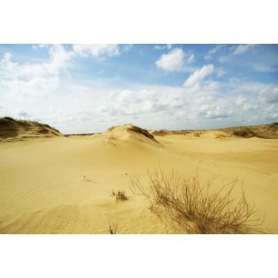 Школа выживания в пустыне Алешко (Алешковские пески)